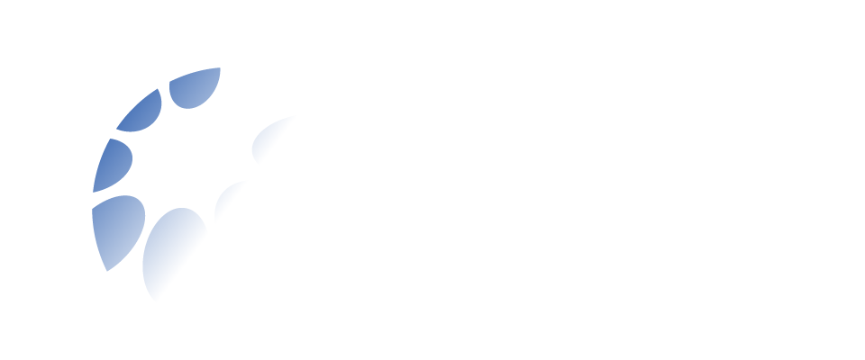 International Disability Alliance logo